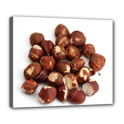 Hazelnuts Deluxe Canvas 24  X 20  (framed)