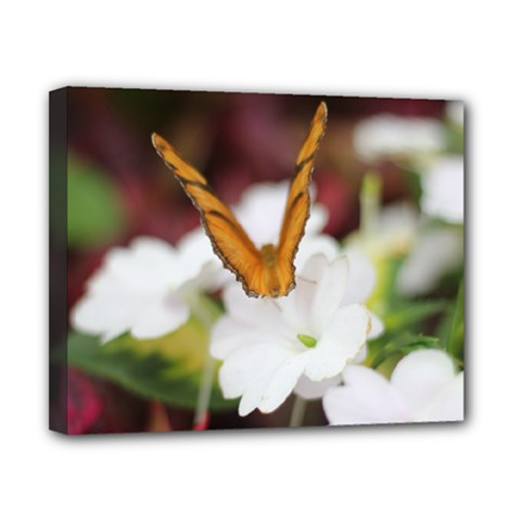 Butterfly 159 Canvas 10  x 8  (Framed)