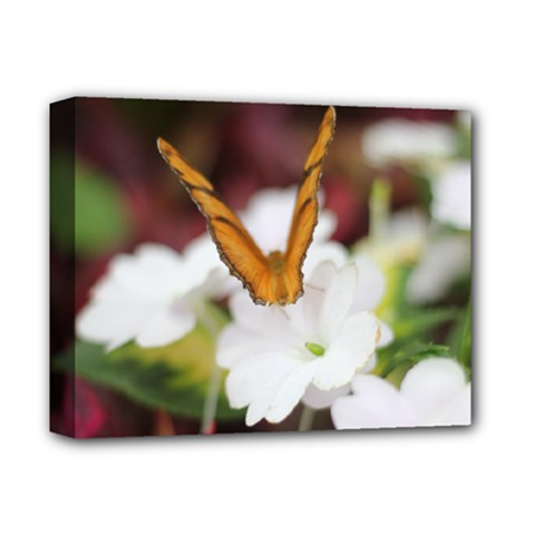 Butterfly 159 Deluxe Canvas 14  X 11  (framed)