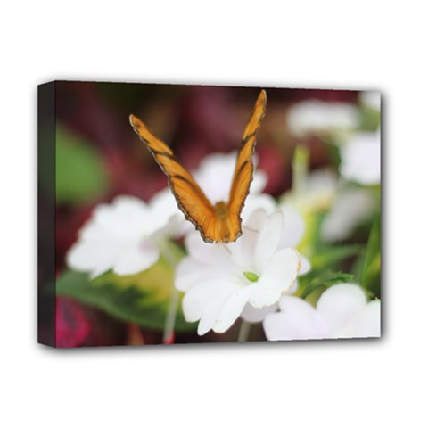 Butterfly 159 Deluxe Canvas 16  X 12  (framed)