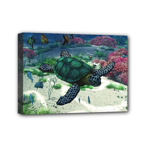Sea Turtle Mini Canvas 7  x 5  (Stretched)