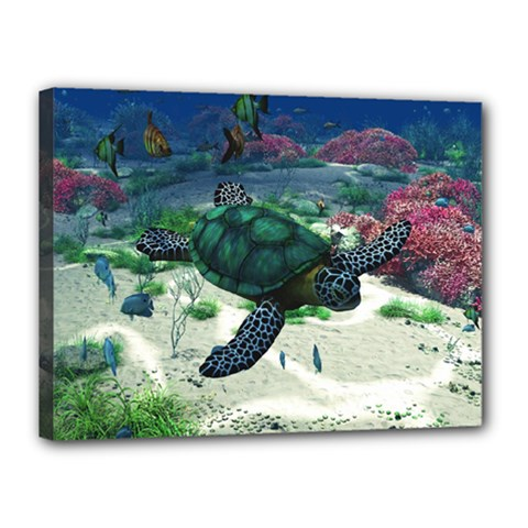 Sea Turtle Canvas 16  x 12  (Stretched)