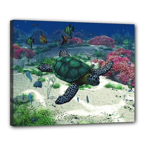 Sea Turtle Canvas 20  x 16  (Stretched)