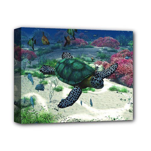 Sea Turtle Deluxe Canvas 14  x 11  (Framed)