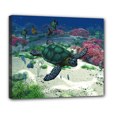 Sea Turtle Deluxe Canvas 24  X 20  (framed)