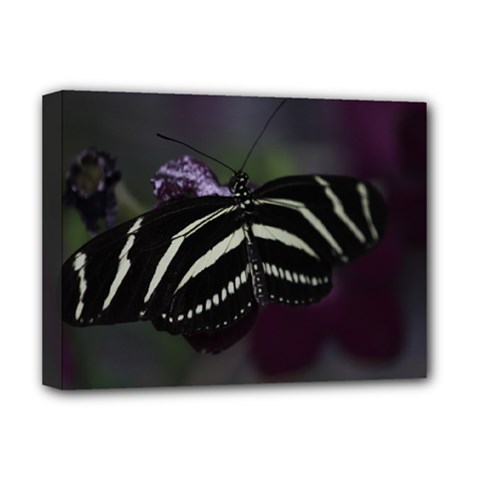 Butterfly 059 001 Deluxe Canvas 16  X 12  (framed)