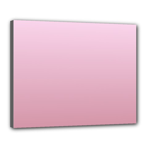 Pink Lace To Puce Gradient Canvas 20  x 16  (Framed)