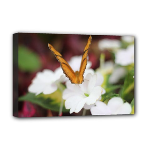 Butterfly 159 Deluxe Canvas 18  x 12  (Framed)