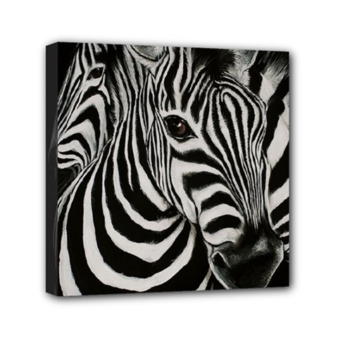 Zebra Mini Canvas 6  X 6  (framed)