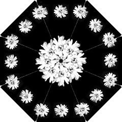 Daisy Chain Black Bridesmaids Umbrella