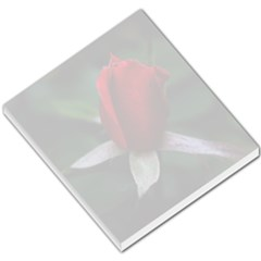 Red Bud  Small Memo Pad