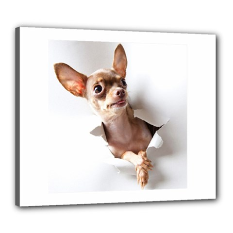 Chihuahua Canvas 24  x 20  (Framed)
