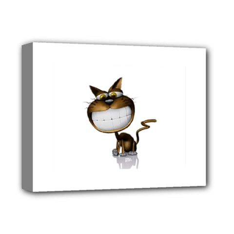 Funny Cat Deluxe Canvas 14  x 11  (Framed)