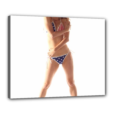 Usa Girl Canvas 20  X 16  (framed)
