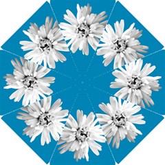 Daisy Sky Blue Bridesmaids Umbrella