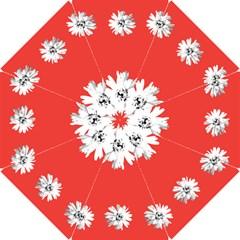 Daisy Chain Coral Briesmaids Umbrella