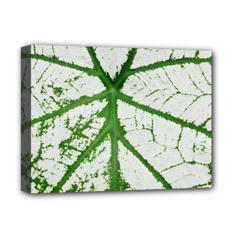 Leaf Patterns Deluxe Canvas 16  X 12  (framed)