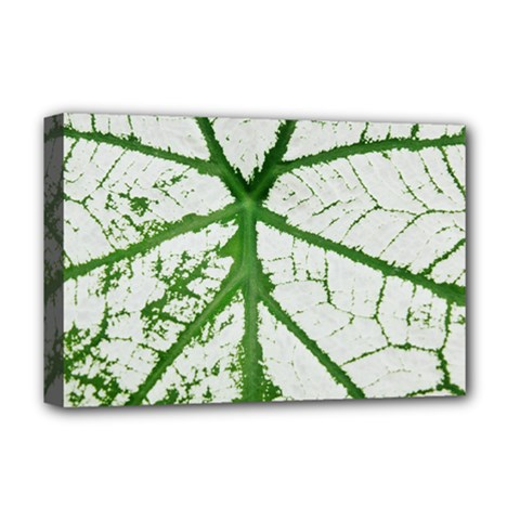 Leaf Patterns Deluxe Canvas 18  x 12  (Framed)