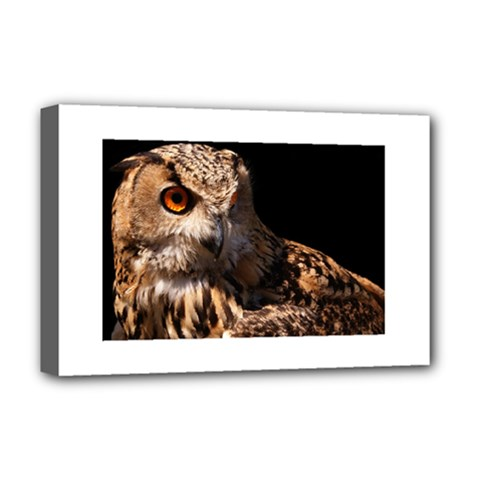 Owl Deluxe Canvas 18  X 12  (framed)