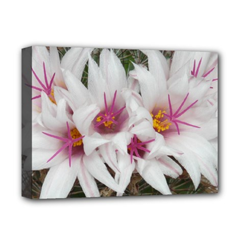 Bloom Cactus  Deluxe Canvas 16  x 12  (Framed)