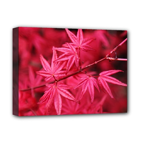 Red Autumn Deluxe Canvas 16  x 12  (Framed)