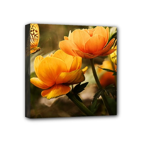 Flowers Butterfly Mini Canvas 4  x 4  (Framed)