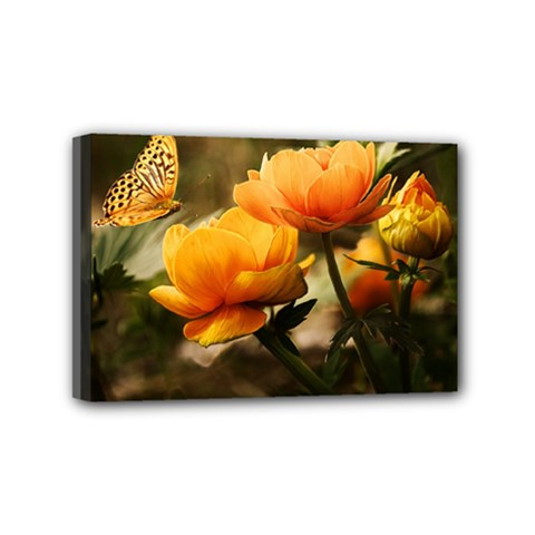 Flowers Butterfly Mini Canvas 6  x 4  (Framed)