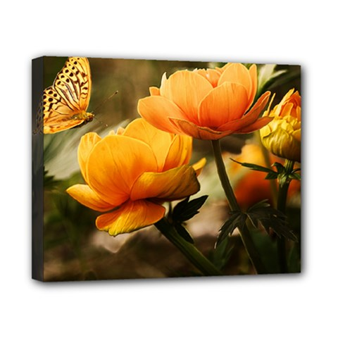 Flowers Butterfly Canvas 10  x 8  (Framed)