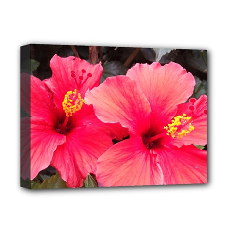 Red Hibiscus Deluxe Canvas 16  X 12  (framed)