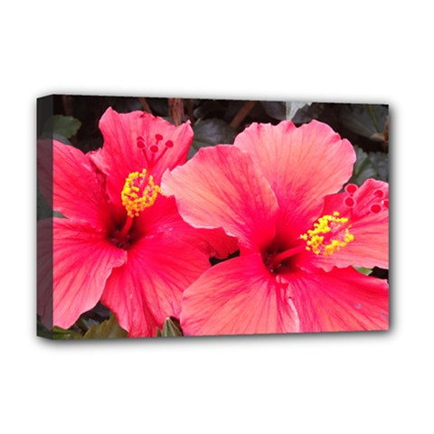 Red Hibiscus Deluxe Canvas 18  x 12  (Framed)