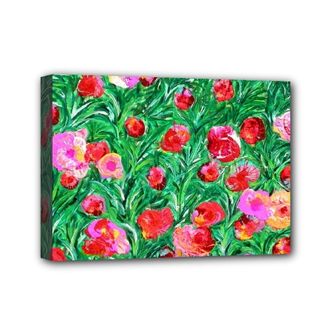 Flower Dreams Mini Canvas 7  X 5  (framed)