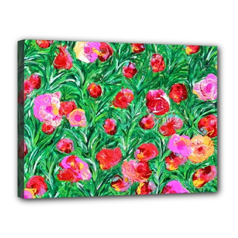 Flower Dreams Canvas 16  x 12  (Framed)
