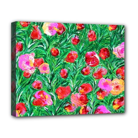 Flower Dreams Deluxe Canvas 20  X 16  (framed)