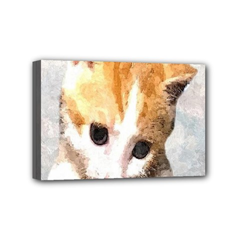 Sweet Face :) Mini Canvas 6  x 4  (Framed)