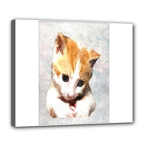 Sweet Face ;) Deluxe Canvas 24  X 20  (framed)