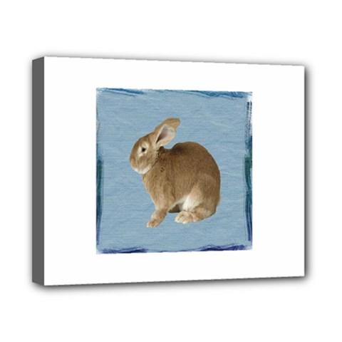 Cute Bunny Canvas 10  x 8  (Framed)