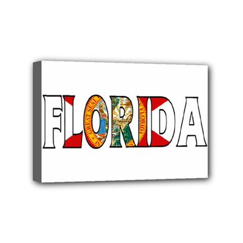 Florida Mini Canvas 6  X 4  (framed)