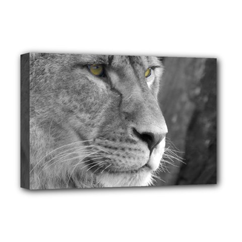 Lion 1 Deluxe Canvas 18  x 12  (Framed)