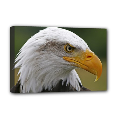 Bald Eagle (2) Deluxe Canvas 18  X 12  (framed)