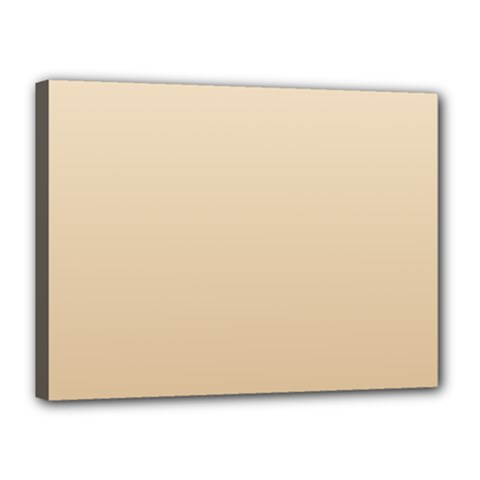 Champagne To Tan Gradient Canvas 16  x 12  (Framed)