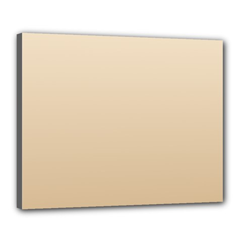 Champagne To Tan Gradient Canvas 20  x 16  (Framed)