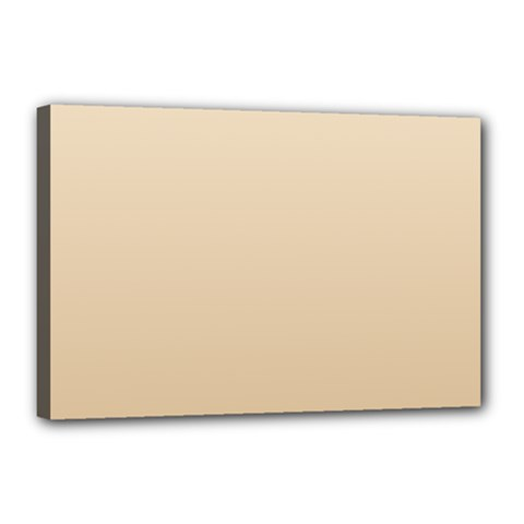 Champagne To Tan Gradient Canvas 18  x 12  (Framed)