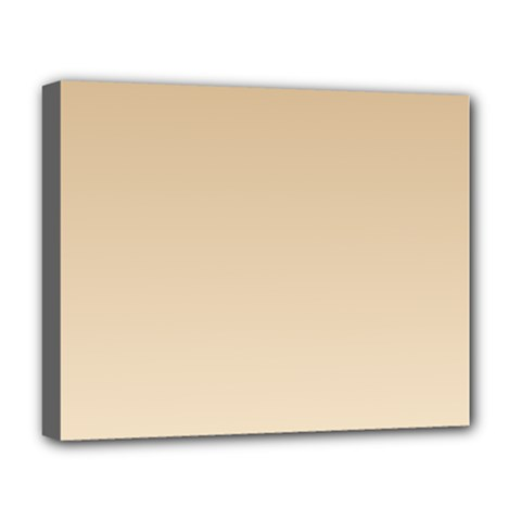 Tan To Champagne Gradient Deluxe Canvas 20  x 16  (Framed)