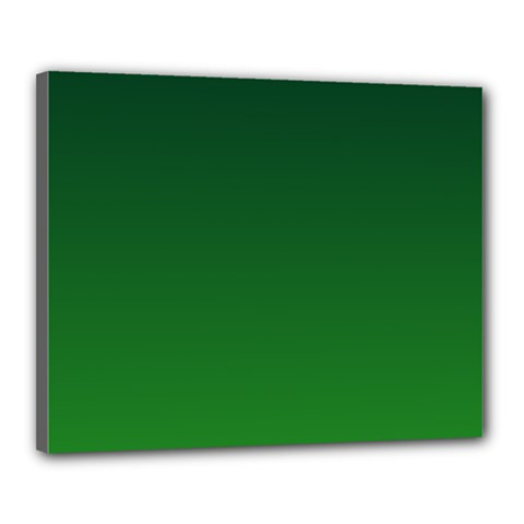 Dark Green To Green Gradient Canvas 20  x 16  (Framed)