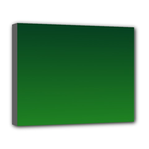 Dark Green To Green Gradient Deluxe Canvas 20  x 16  (Framed)