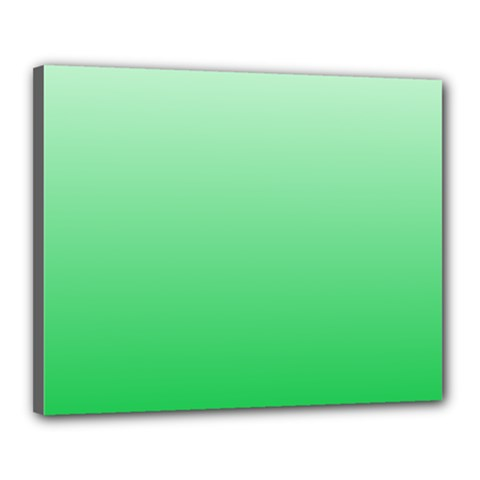 Pastel Green To Dark Pastel Green Gradient Canvas 20  x 16  (Framed)