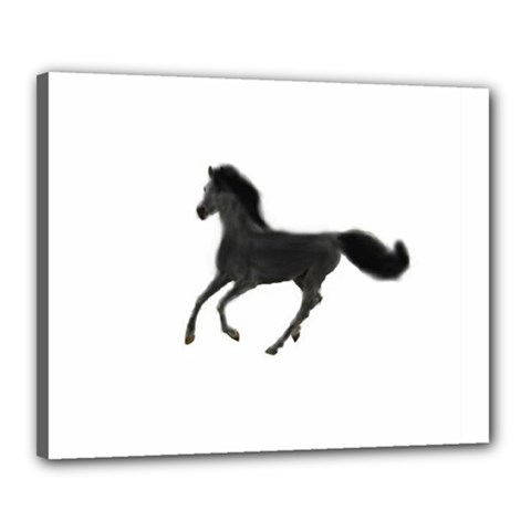 Running Horse Canvas 20  x 16  (Framed)