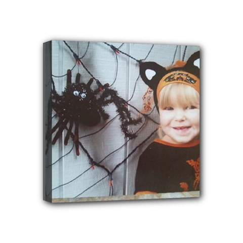 Spider Baby Mini Canvas 4  x 4  (Framed)
