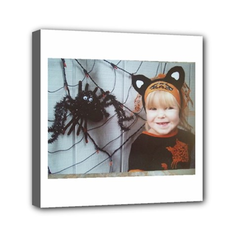 Spider Baby Mini Canvas 6  x 6  (Framed)