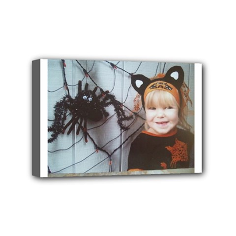 Spider Baby Mini Canvas 6  x 4  (Framed)